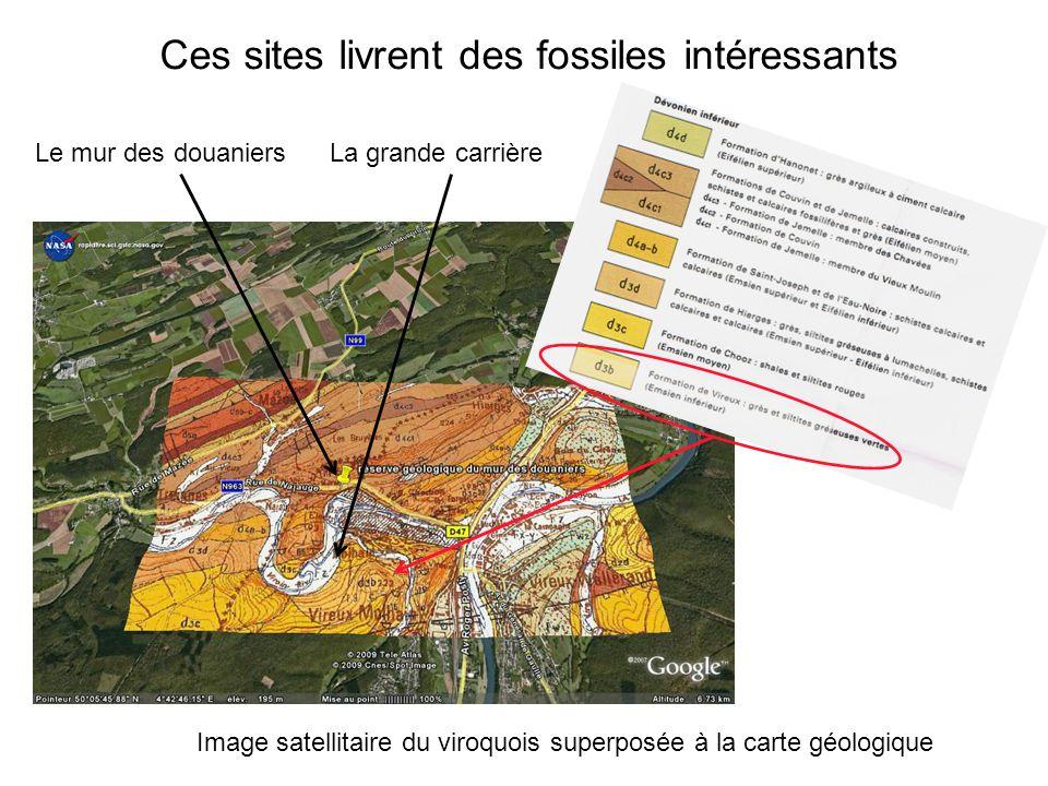 Ces sites livrent des fossiles intéressants Image satellitaire du viroquois superposée à la carte géologique La grande carrièreLe mur des douaniers