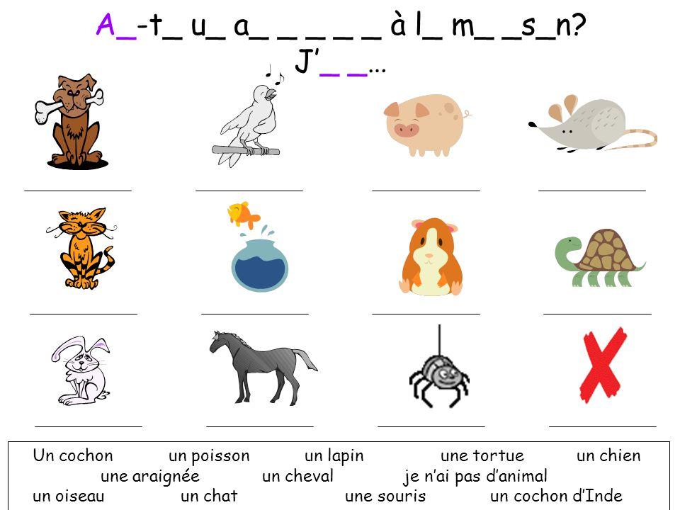 Et oui, j'ai un cheval, un cochon, une araignée, et un cochon d'Inde qui s'appelle Alain! As-tu un animal à la maison? 2 As-tu un animal à la maison?