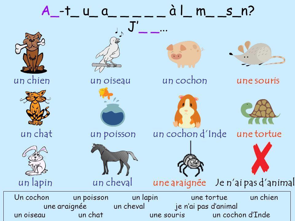 A_-t_ u_ a_ _ _ _ _ à l_ m_ _s_n? J'_ _… Un cochonun poissonun lapinune tortueun chien une araignée un cheval je n'ai pas d'animal un oiseau un chat u