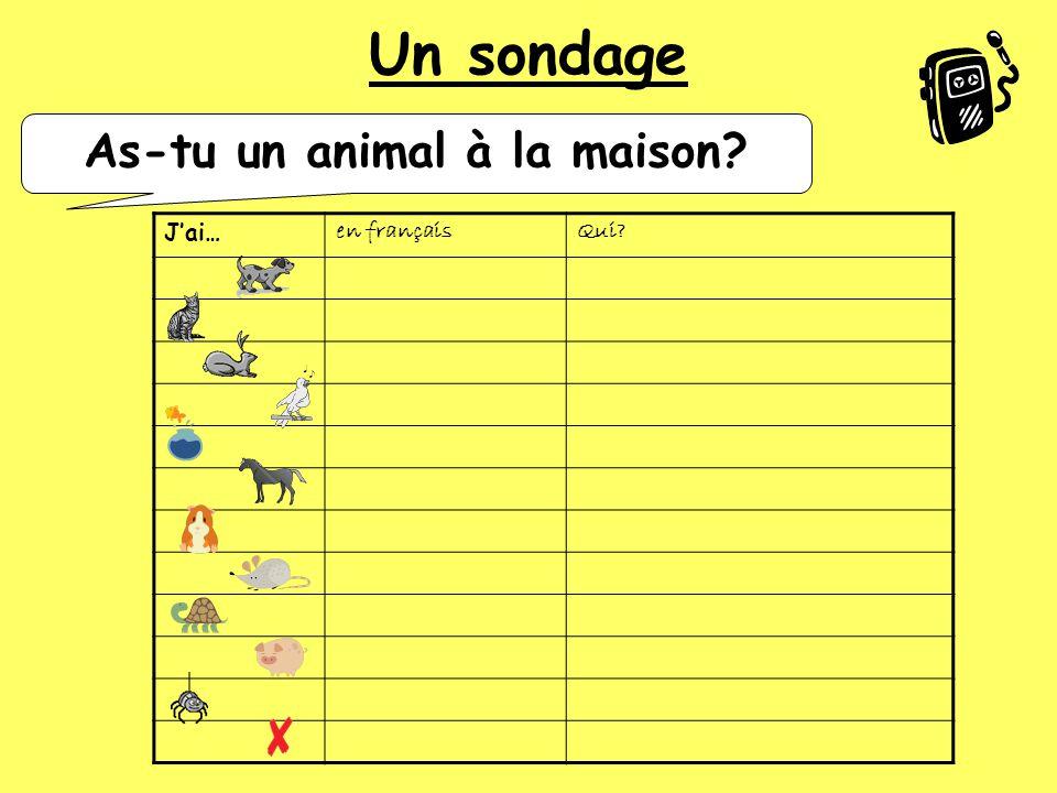 12345 J'ai… As-tu un animal à la maison?