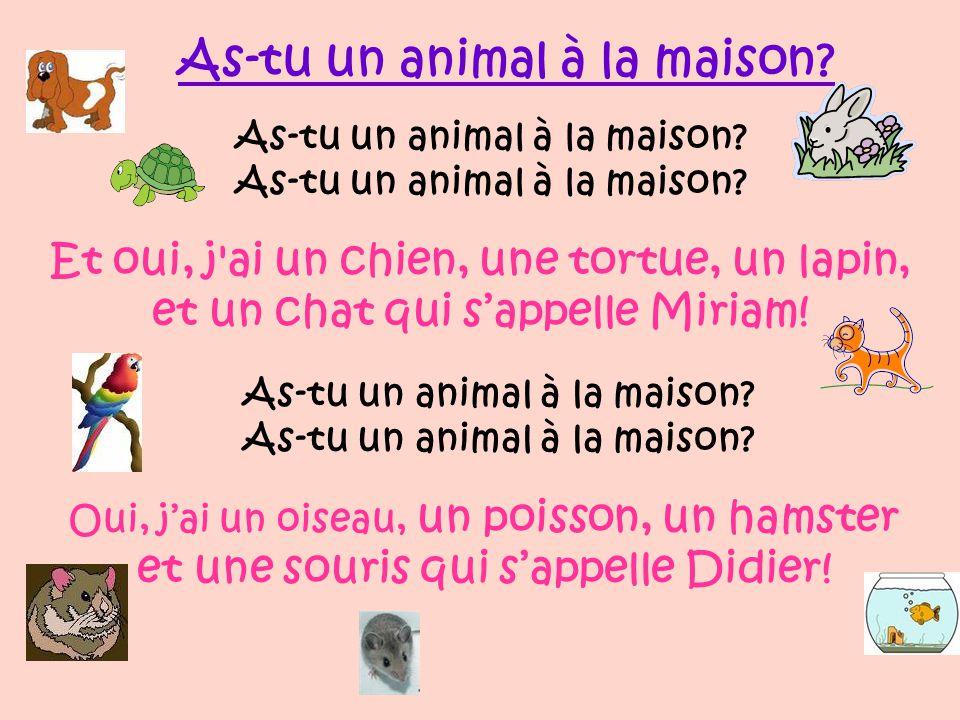 Et oui, j'ai un, un, une, et un qui s'appelle Alain! As-tu un animal à la maison? 2 As-tu un ________ à la maison? As-tu un animal à la _________?