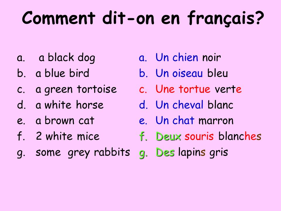 Comment dit-on en français? a.a black dog b.a blue bird c.a green tortoise d.a white horse e.a brown cat f.two white mice g.some grey rabbits