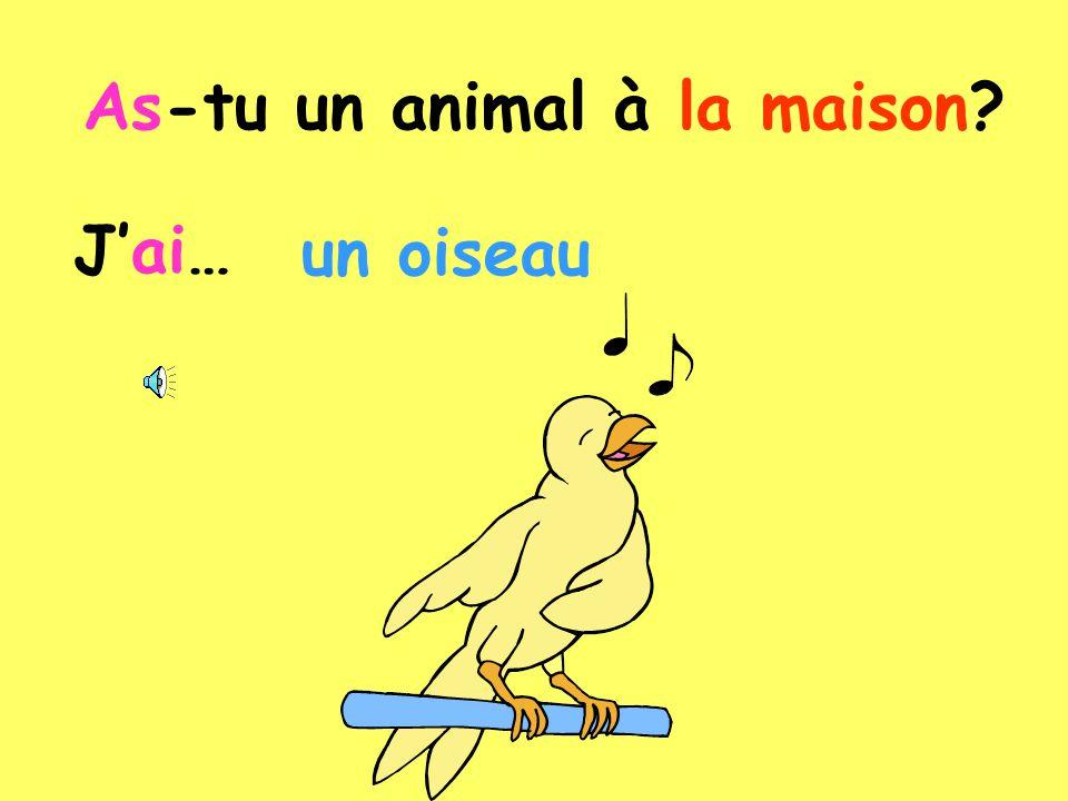 C) Coloriez les animaux: 1.J'ai un oiseau bleu et vert.