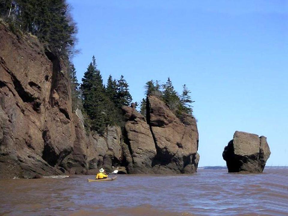 Aujourd'hui le rivage de Hopewell attire autant les touristes amateurs de beaux paysages marins que les géologues, les chercheurs et les océanologues.