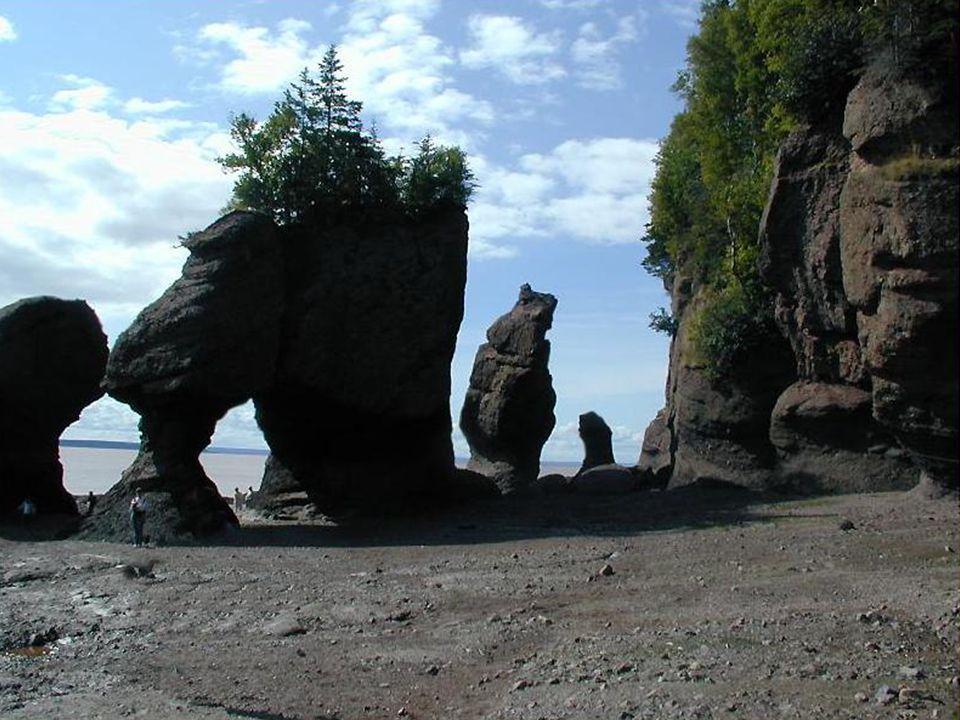  Voici l un des rivages de mer les plus fascinants de la planète, dans la baie de Fundy, Nouveau-Brunswick, au Canada.