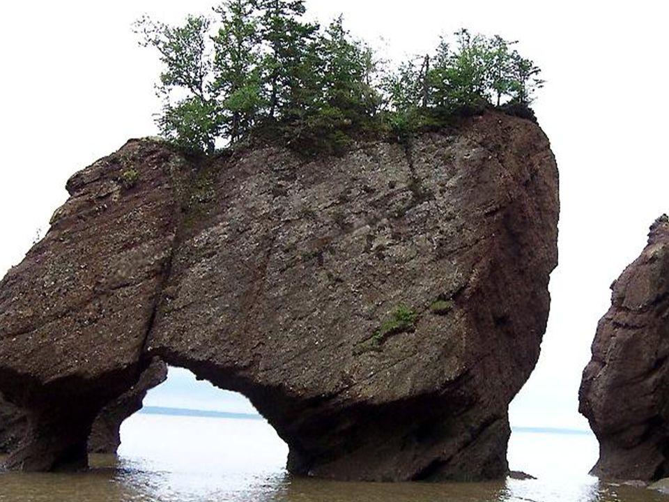 Il existe dans le sud de la province canadienne du Nouveau Brunswick, dans la baie de Fundy, sur l'Atlantique Nord, en pleine terre acadienne, un étrange rivage où la nature a sculpté au cours des millénaires des formes admirables dans les rochers et les falaises.