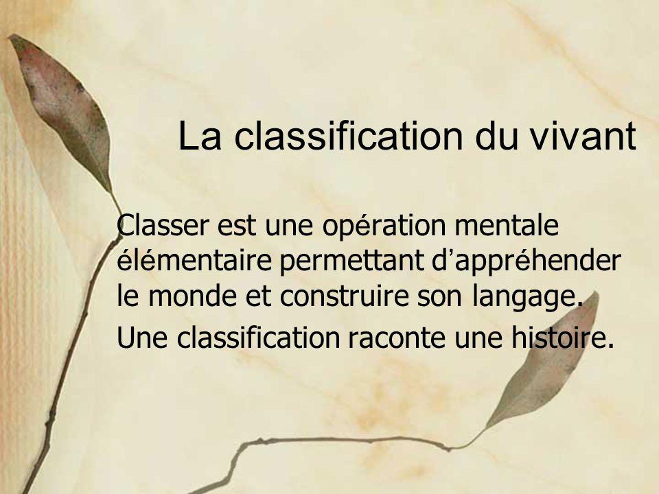 La classification du vivant Classer est une op é ration mentale é l é mentaire permettant d ' appr é hender le monde et construire son langage. Une cl