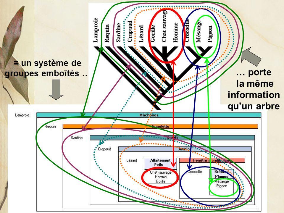 = un système de groupes emboîtés … … porte la même information qu'un arbre