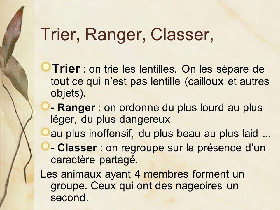 Trier, Ranger, Classer, Trier : on trie les lentilles. On les sépare de tout ce qui n'est pas lentille (cailloux et autres objets). - Ranger : on ordo