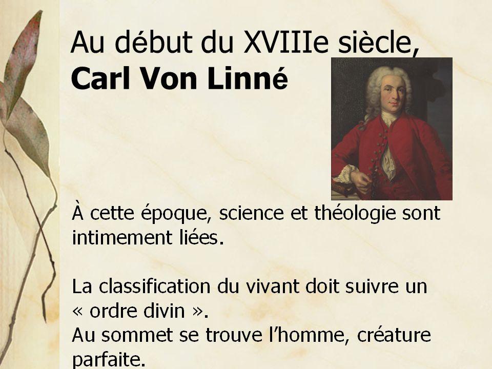 Au d é but du XVIIIe si è cle, Carl Von Linn é