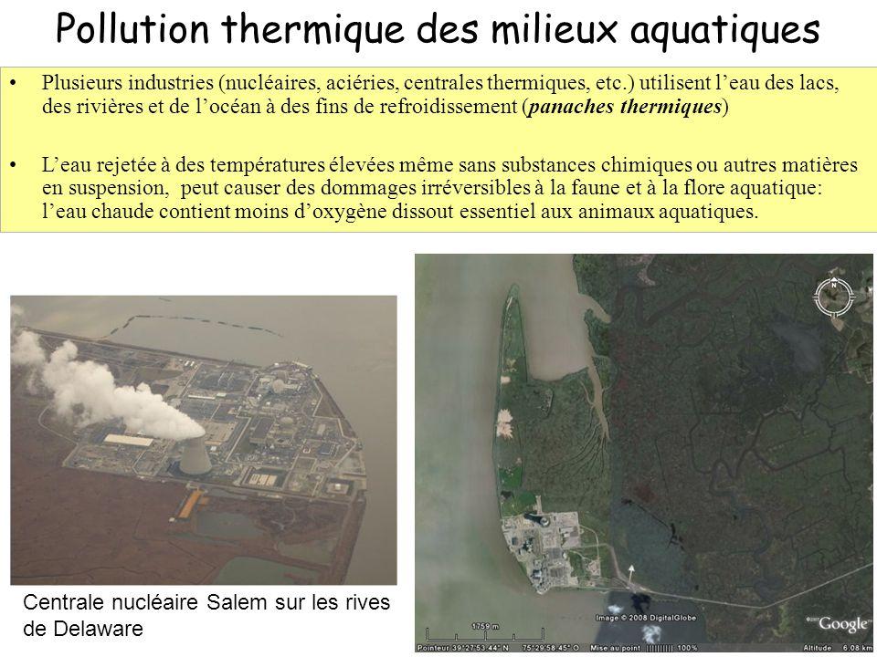 32 Pollution thermique des milieux aquatiques Centrale nucléaire Salem sur les rives de Delaware Plusieurs industries (nucléaires, aciéries, centrales