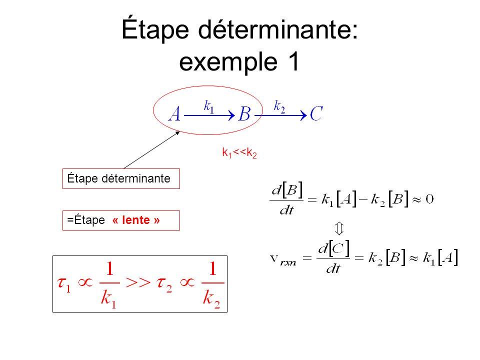 Étape déterminante: exemple 1 k 1 <<k 2 Étape déterminante =Étape « lente »
