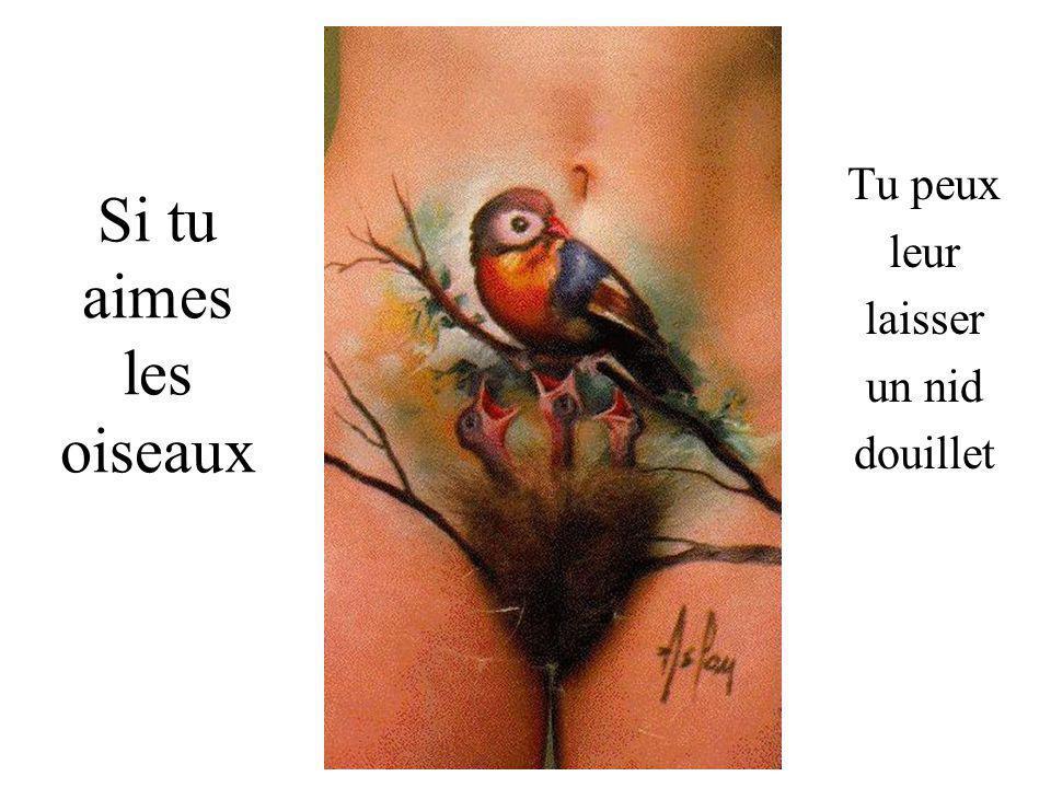 Si tu aimes les oiseaux Tu peux leur laisser un nid douillet