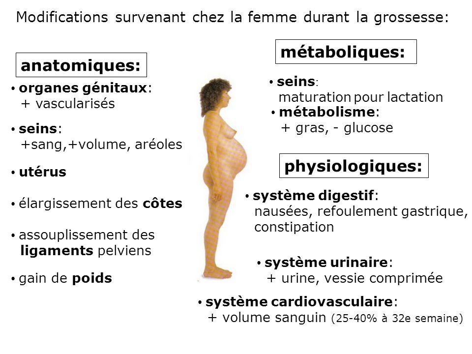 Modifications survenant chez la femme durant la grossesse: anatomiques: organes génitaux: + vascularisés métaboliques: seins : maturation pour lactati