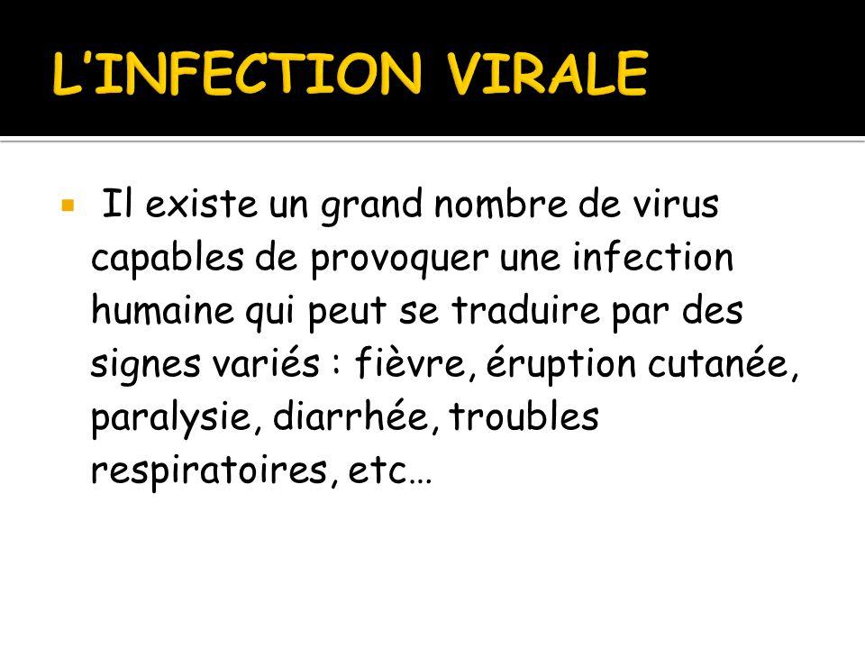  Il existe un grand nombre de virus capables de provoquer une infection humaine qui peut se traduire par des signes variés : fièvre, éruption cutanée