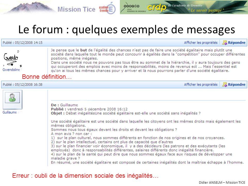 Le forum : quelques exemples de messages Didier ANSELM – Mission TICE Bonne définition… Erreur : oubli de la dimension sociale des inégalités…