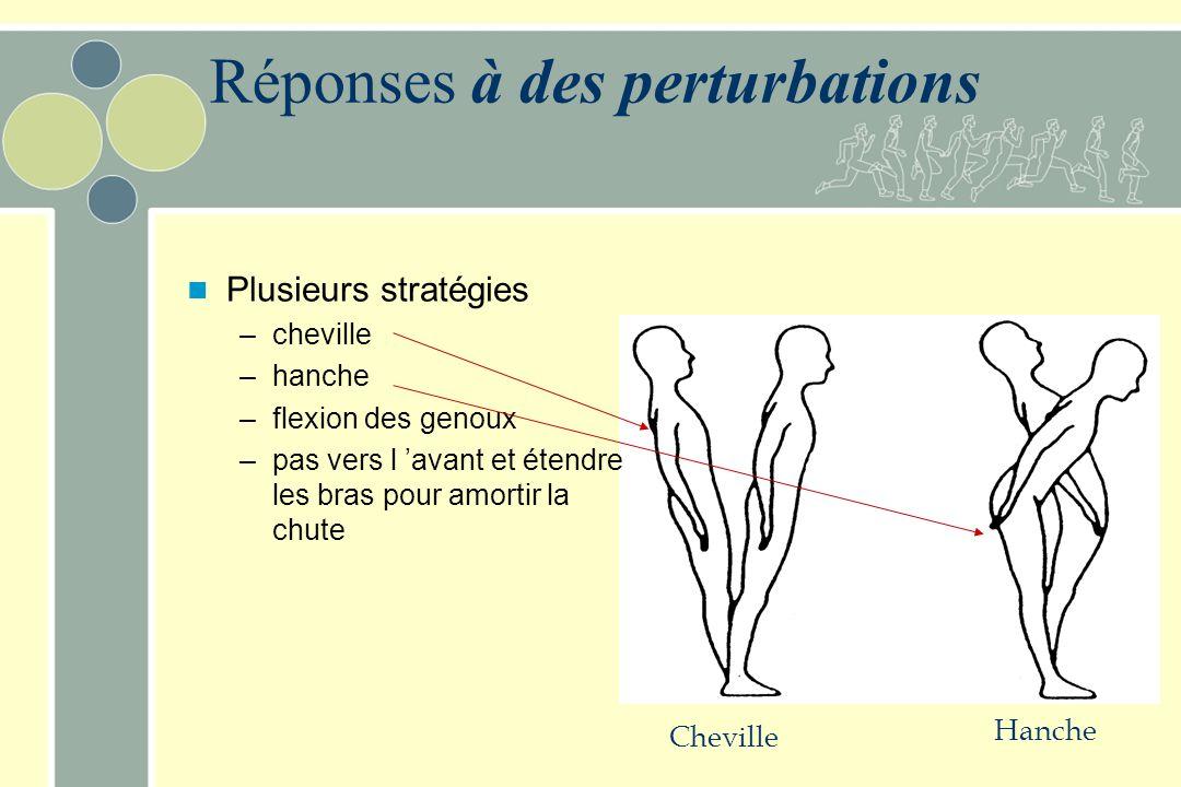 Réactions posturales Réactions posturales à des perturbations chez l'Homme –ajustements suite à des perturbations –ajustements lors du mouvement volon