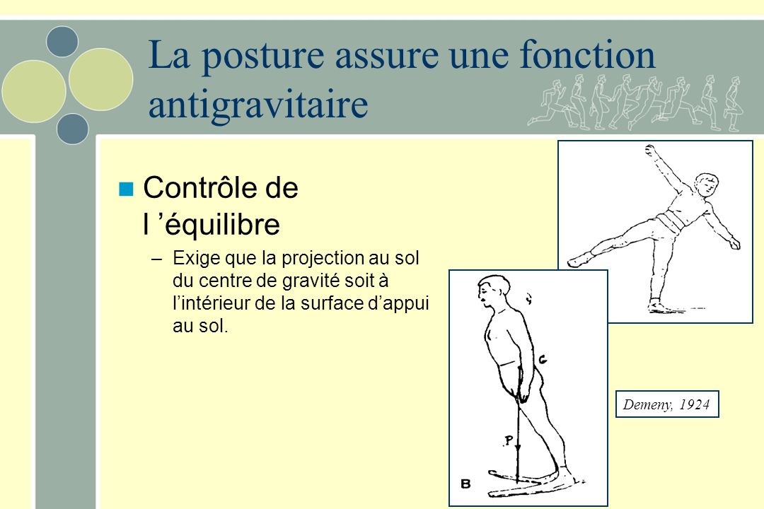 Fig 13.8 Les canaux semi-circulaires