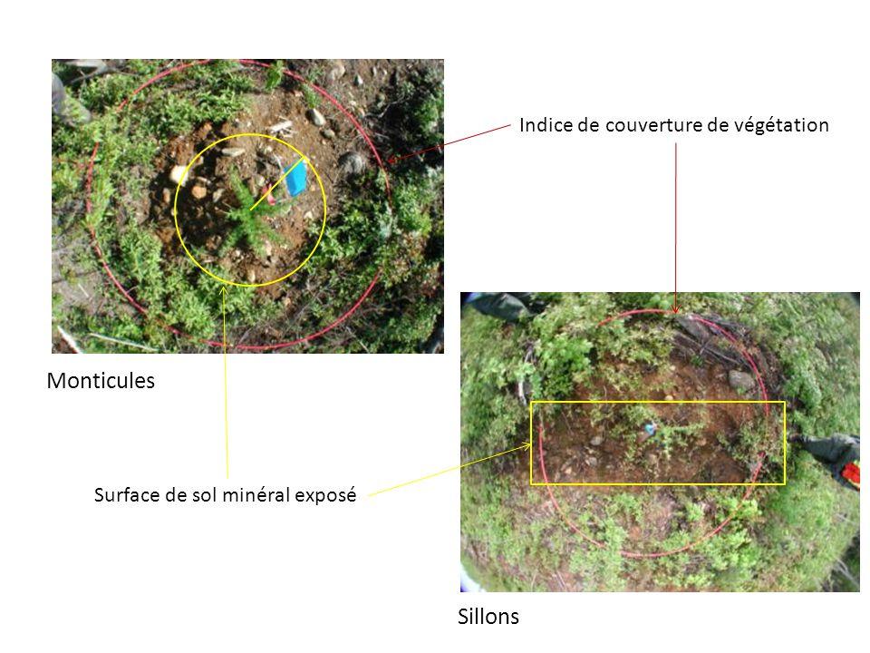 Monticules Sillons Surface de sol minéral exposé Indice de couverture de végétation