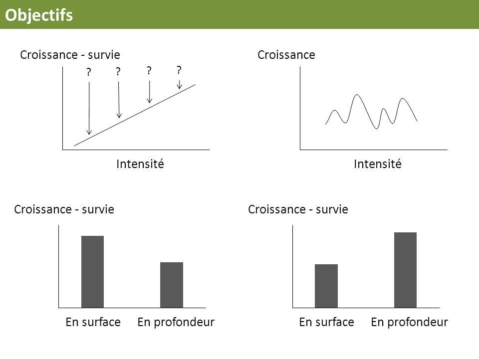 Intensité Croissance - survie Intensité Croissance Objectifs Croissance - survie En surface En profondeur Croissance - survie En surfaceEn profondeur