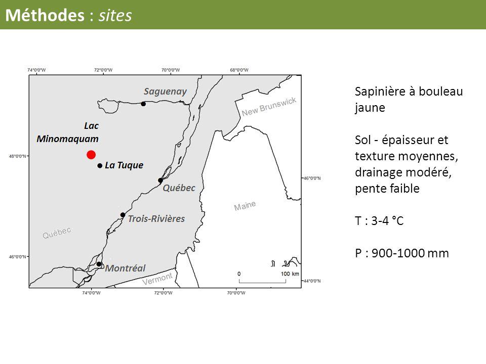 Sapinière à bouleau jaune Sol - épaisseur et texture moyennes, drainage modéré, pente faible T : 3-4 °C P : 900-1000 mm Méthodes : sites