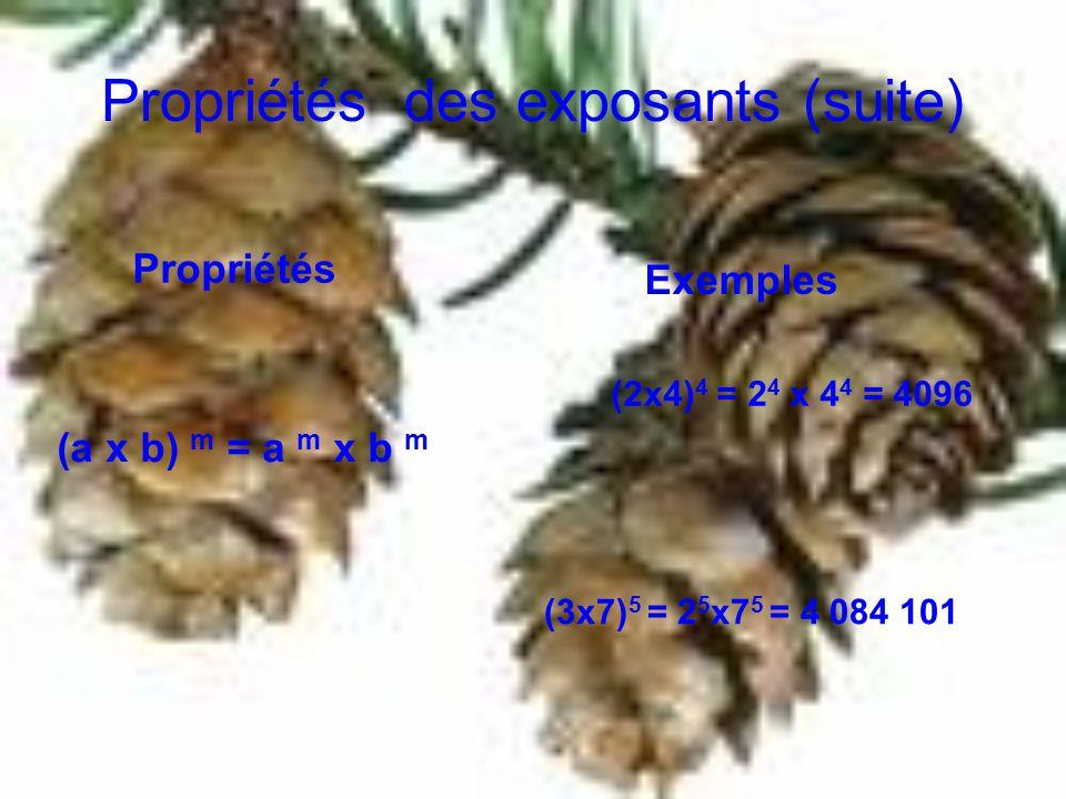 Propriétés des exposants (suite) Propriétés Exemples (a x b) m = a m x b m (2x4) 4 = 2 4 x 4 4 = 4096 (3x7) 5 = 2 5 x7 5 = 4 084 101