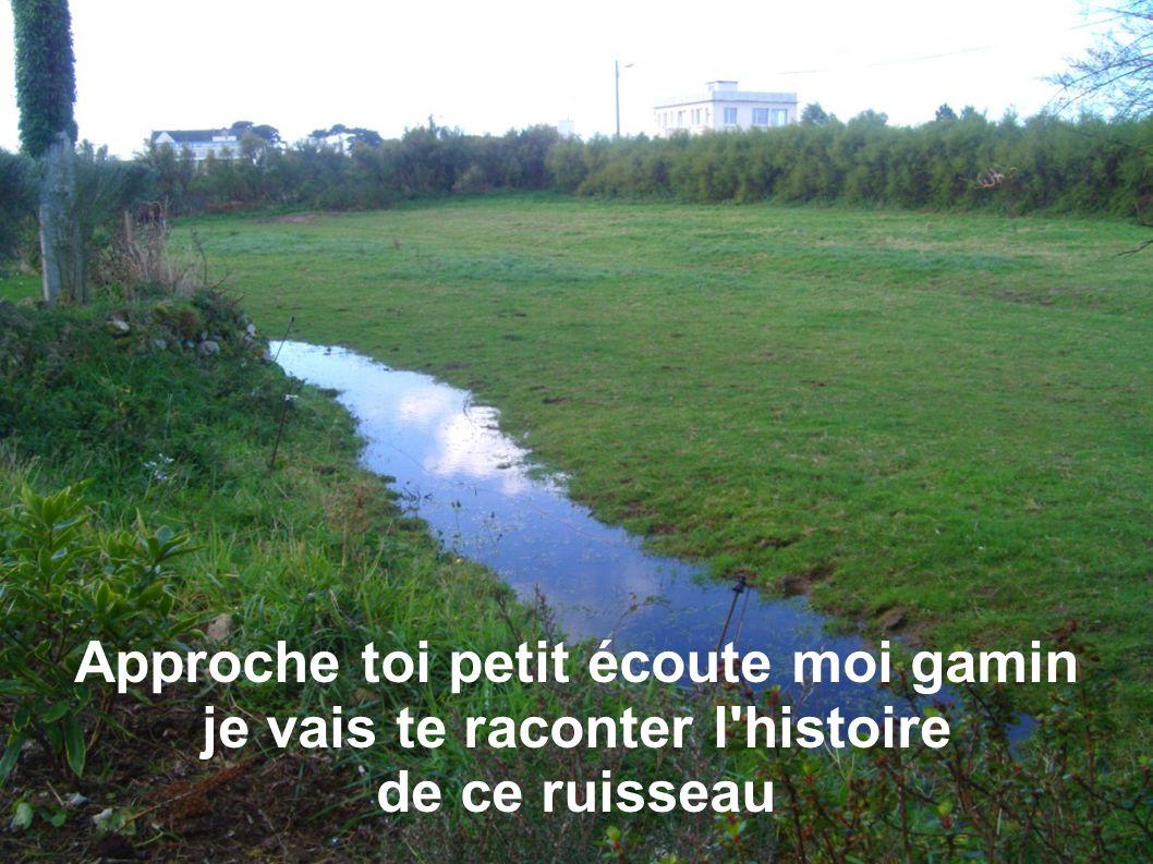 Au début il était beau au début il était plein la nature avançait il y avait beaucoup d eau