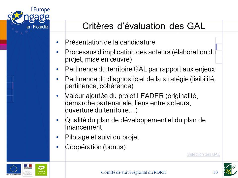 Comité de suivi régional du PDRH10 Critères d'évaluation des GAL Présentation de la candidature Processus d'implication des acteurs (élaboration du pr