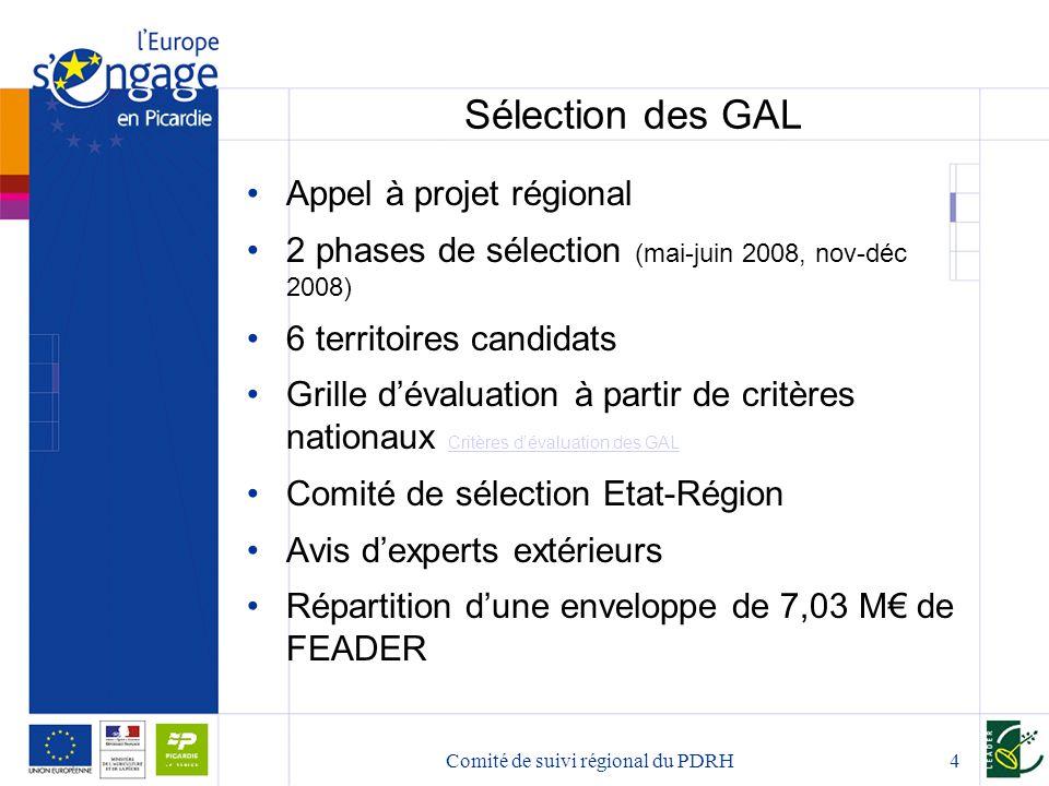 Comité de suivi régional du PDRH5 4 GAL en Picardie TerritoirePriorité ciblée Enveloppe FEADER Pays de Sources et Vallées « Faire de la gestion de l'eau en tant que ressource et patrimoine un facteur de développement durable » 1,75 M€ Pays du Sud de l'Aisne « Faire du Pays du Sud de l'Aisne un territoire d'excellence en matière de développement durable » 1,63 M€ Pays de Thiérache « Faire du patrimoine thiérachien un capital créateur de développement durable » 1,8 M€ Pays de Santerre Haute- Somme « Structuration de la destination Haute-Somme » 1,85 M€