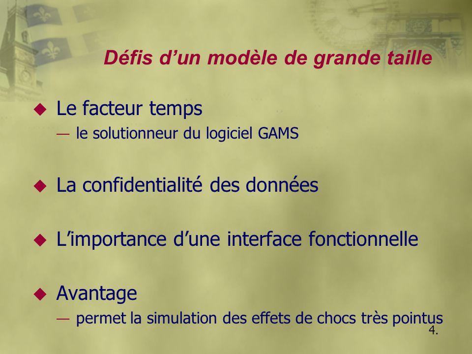 Défis d'un modèle de grande taille u Le facteur temps — le solutionneur du logiciel GAMS u La confidentialité des données u L'importance d'une interfa