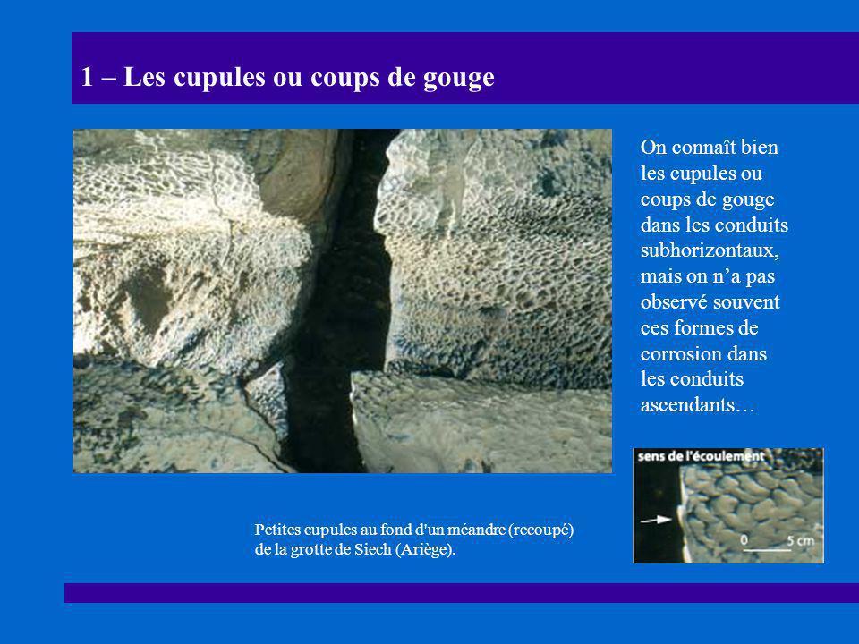 1 – Les cupules ou coups de gouge On connaît bien les cupules ou coups de gouge dans les conduits subhorizontaux, mais on n'a pas observé souvent ces formes de corrosion dans les conduits ascendants… Petites cupules au fond d un méandre (recoupé) de la grotte de Siech (Ariège).