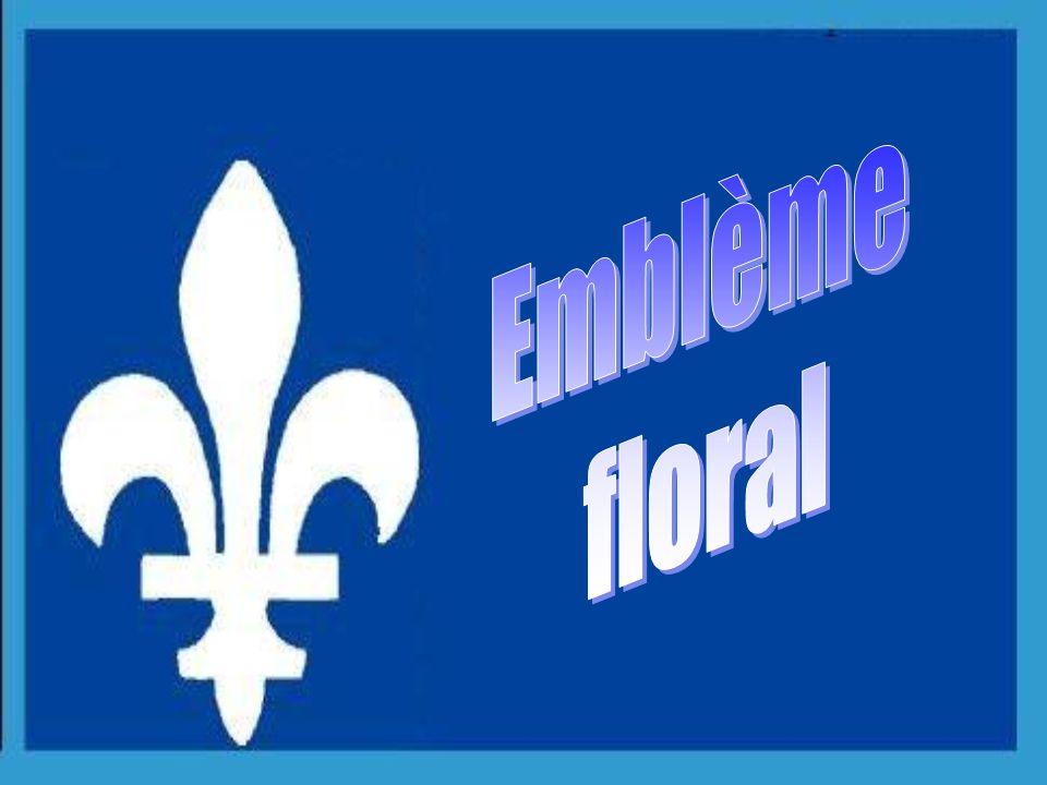 1987 Le harfang des neiges a été choisi comme emblème aviaire officiel du Québec, symbolisant ainsi le caractère nordique du Québec.