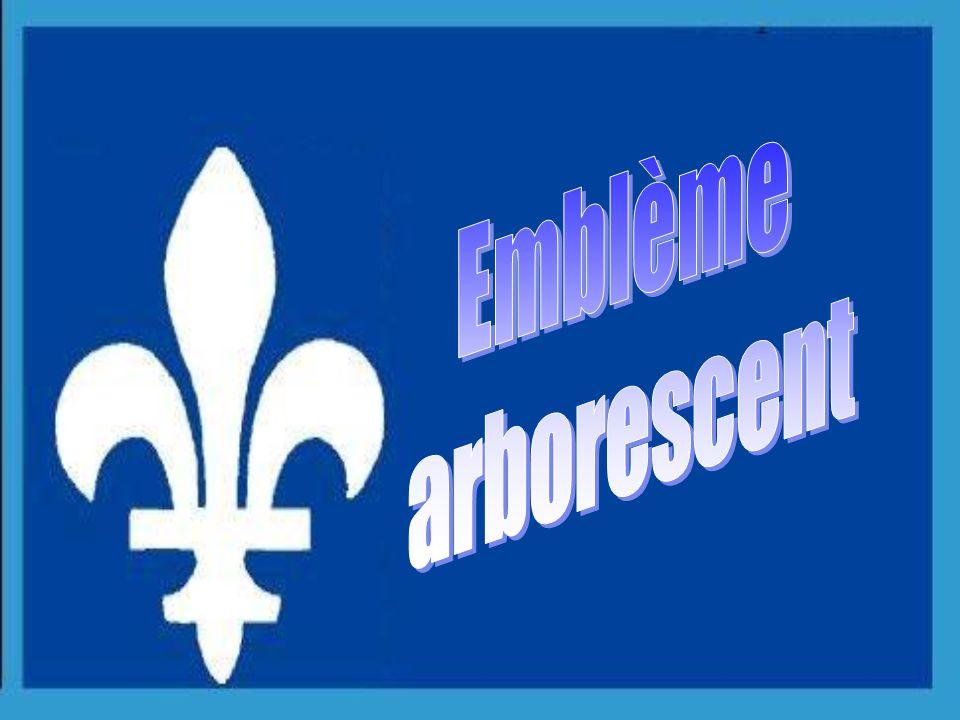 1999 L'iris versicolore a été consacré nouvel emblême floral du Québec.