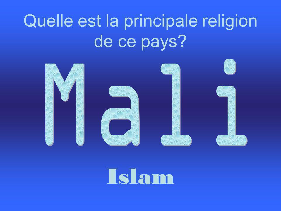 Quelle est la principale religion de ce pays Islam