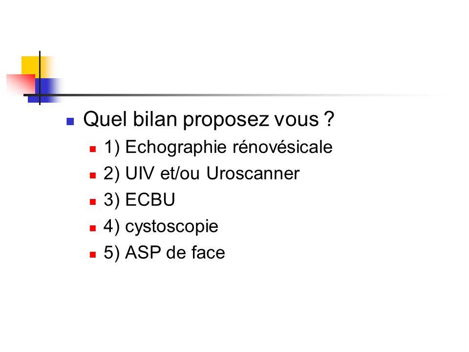 Quel bilan proposez vous ? 1) Echographie rénovésicale 2) UIV et/ou Uroscanner 3) ECBU 4) cystoscopie 5) ASP de face