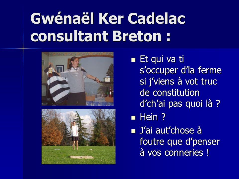 Gwénaël Ker Cadelac consultant Breton : Et qui va ti s'occuper d'la ferme si j'viens à vot truc de constitution d'ch'ai pas quoi là .