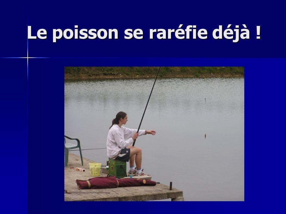 Le poisson se raréfie déjà !