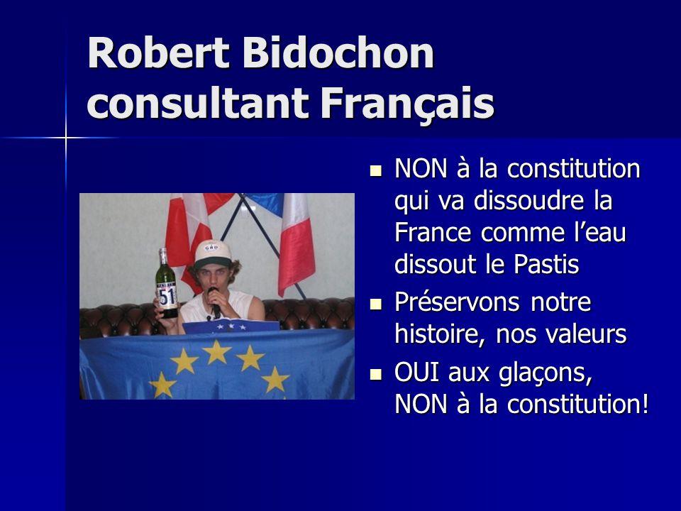 Robert Bidochon consultant Français NON à la constitution qui va dissoudre la France comme l'eau dissout le Pastis Préservons notre histoire, nos valeurs OUI aux glaçons, NON à la constitution!