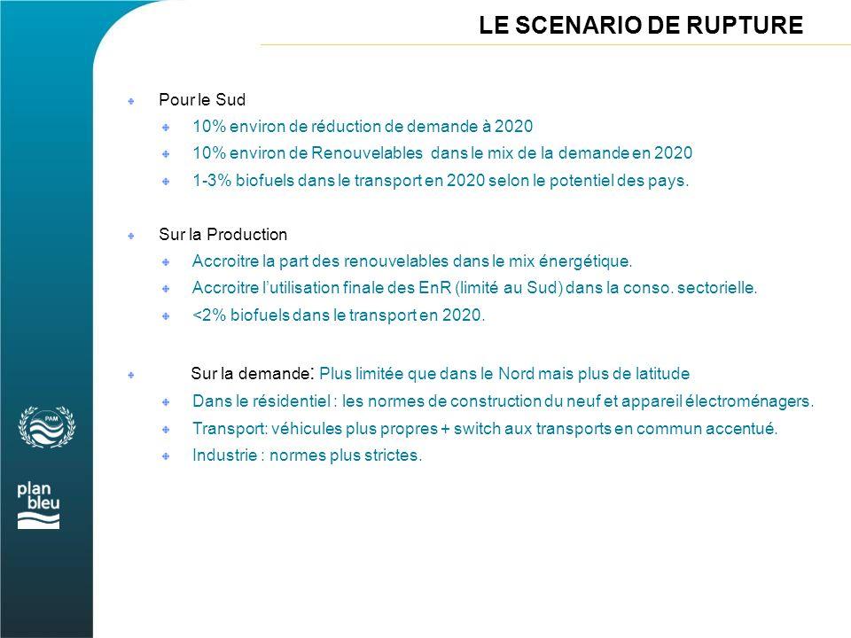 LE SCENARIO DE RUPTURE Pour le Sud 10% environ de réduction de demande à 2020 10% environ de Renouvelables dans le mix de la demande en 2020 1-3% biof