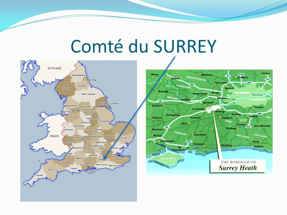 Comté du SURREY