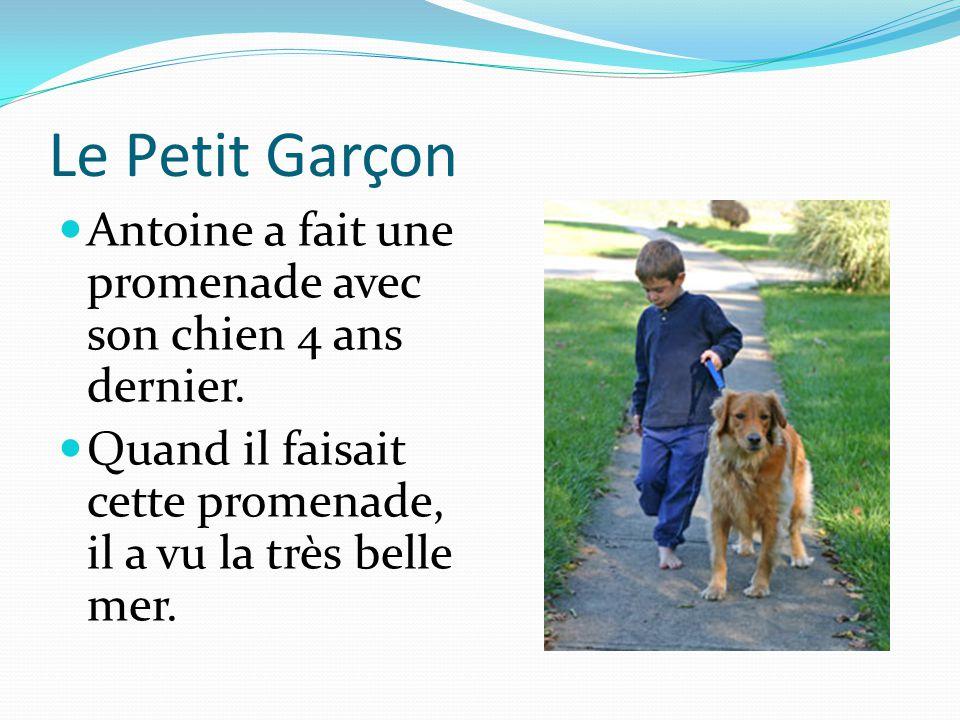 Le Petit Garçon Antoine a fait une promenade avec son chien 4 ans dernier. Quand il faisait cette promenade, il a vu la très belle mer.