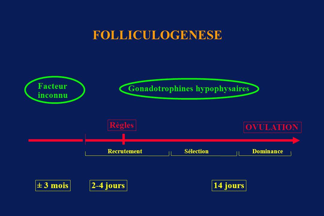 Folliculogénèse J-3J5J6J8J9J14 RecrutementSélectionDominance FSH -FSH + FSH -