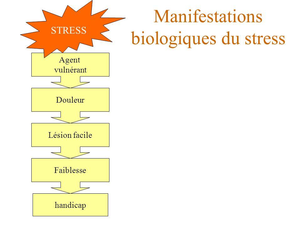 Manifestations biologiques du stress handicap Agent vulnérant Douleur Lésion facile Faiblesse Agent vulnérant STRESS