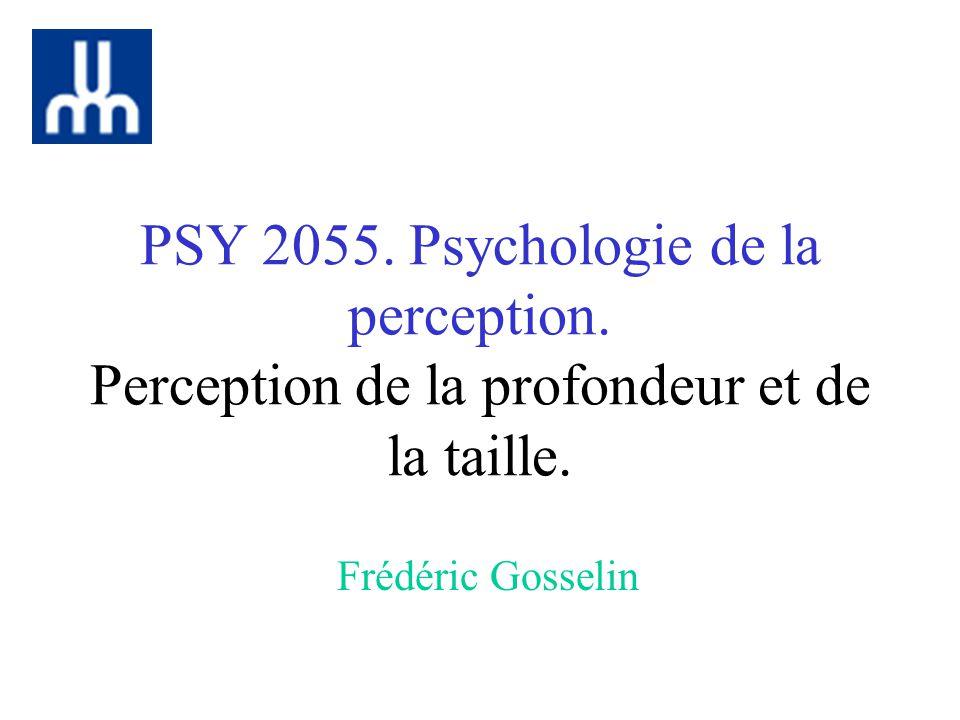 PSY 2055. Psychologie de la perception. Perception de la profondeur et de la taille. Frédéric Gosselin