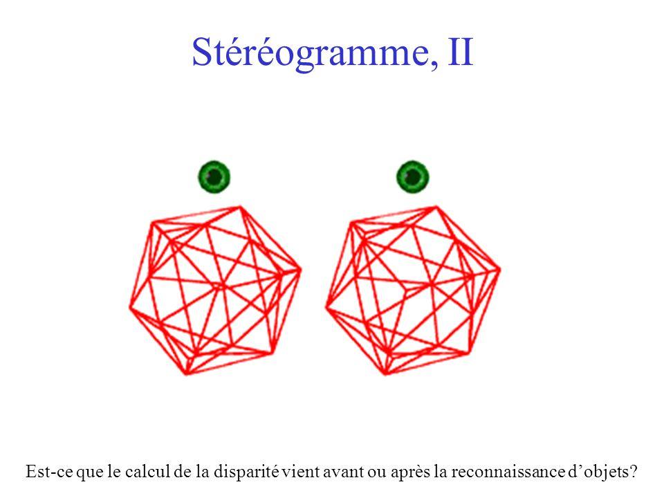 Stéréogramme, II Est-ce que le calcul de la disparité vient avant ou après la reconnaissance d'objets?