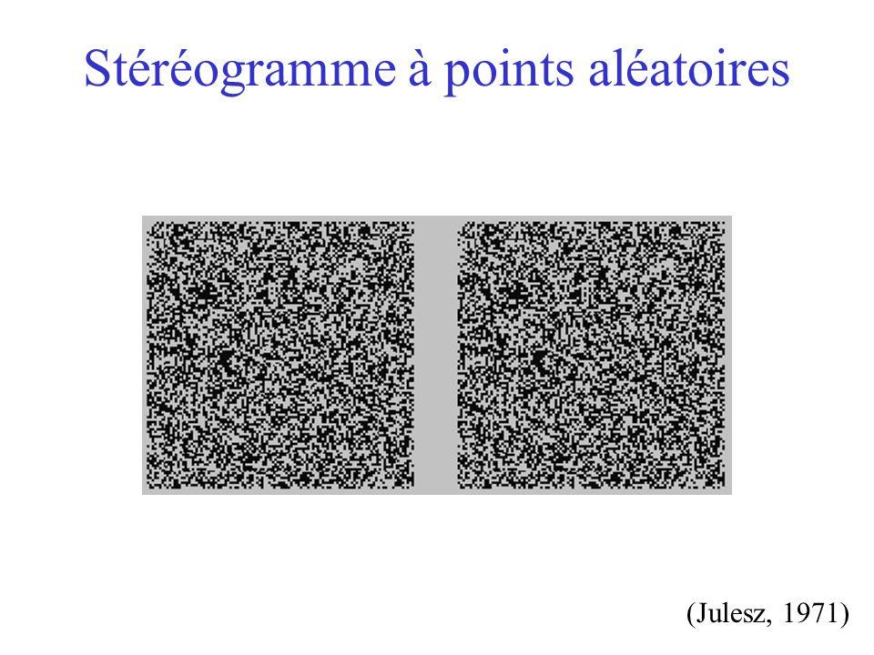 Stéréogramme à points aléatoires (Julesz, 1971)