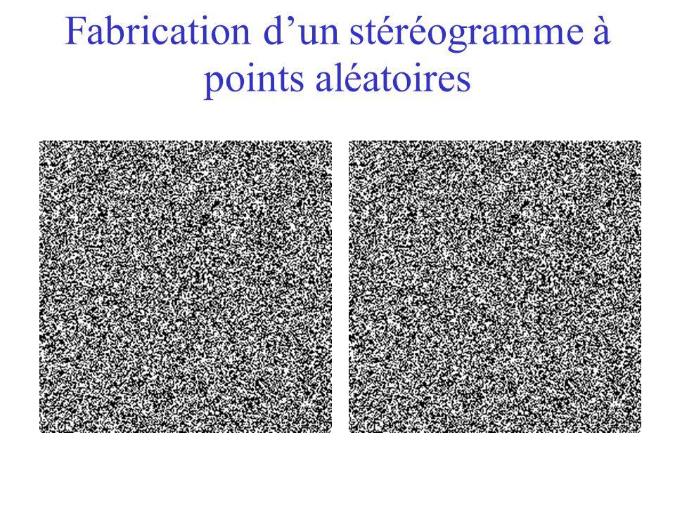 Fabrication d'un stéréogramme à points aléatoires