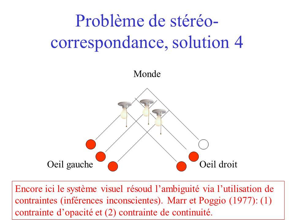 Problème de stéréo- correspondance, solution 4 Oeil gaucheOeil droit Monde Encore ici le système visuel résoud l'ambiguité via l'utilisation de contra