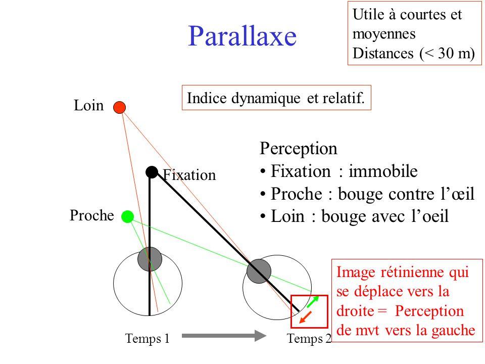 Parallaxe Temps 1 Loin Fixation Proche Perception Fixation : immobile Proche : bouge contre l'œil Loin : bouge avec l'oeil Temps 2 Utile à courtes et