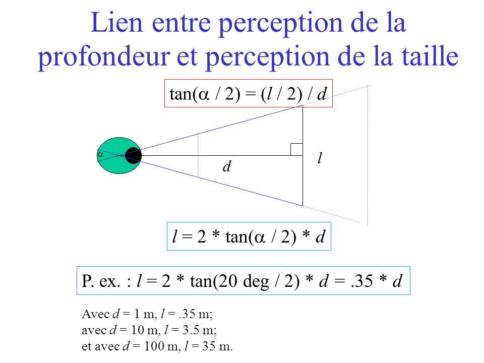  l d Lien entre perception de la profondeur et perception de la taille l = 2 * tan(  / 2) * d P. ex. : l = 2 * tan(20 deg  / 2) * d =.35 * d Avec